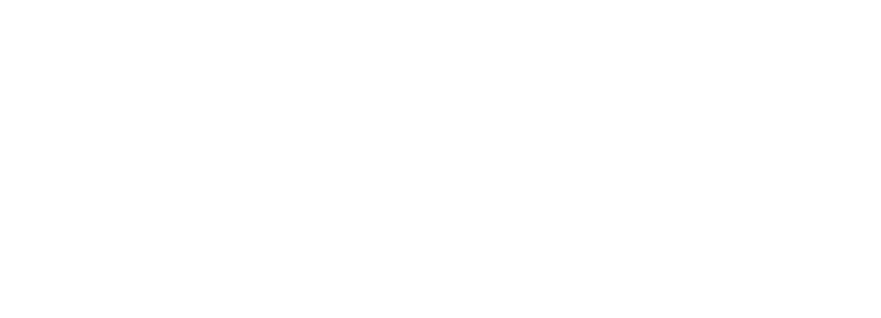 cnz_logo_png_white
